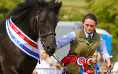 Kinross Show Equine flu policy