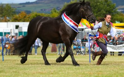 A SHORT HISTORY OF KINROSS SHOW